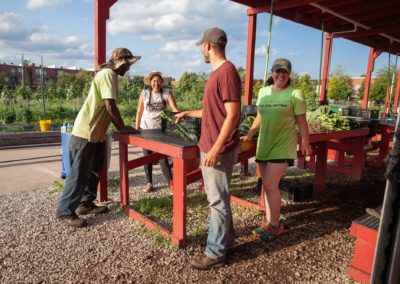 community supported agriculture just roots team