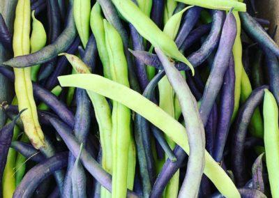 the freshest beans